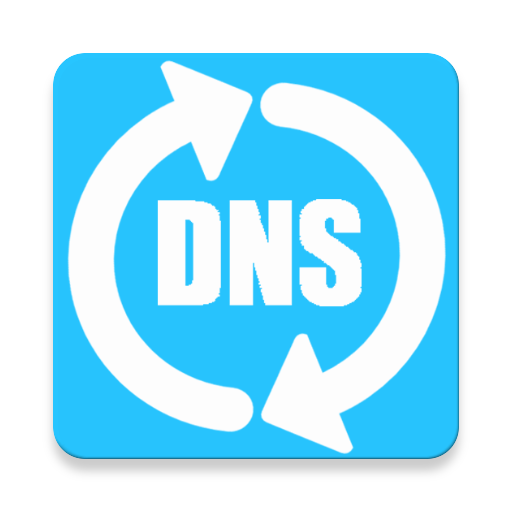 Download Big DNS Changer App
